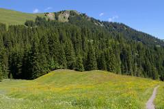 Alpenblühen