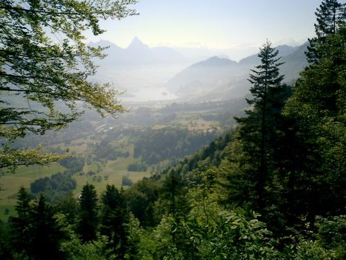 Blick vom Rigi über Goldau hinweg auf den Lauerzer See