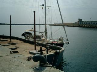 Concrete boats (literally) for tuna fishing